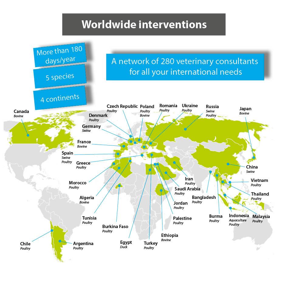 Carte-international-EN
